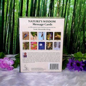 Nature's Wisdom Message Cards