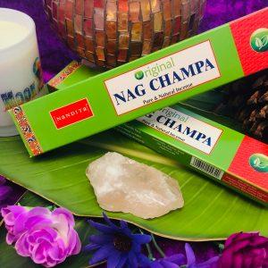 Nag Champa, Nandita