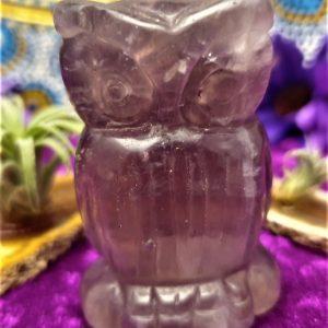 Fluorite Owl