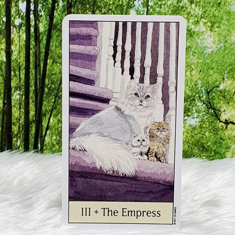 Cat's Eye Tarot by Debra M. Givin