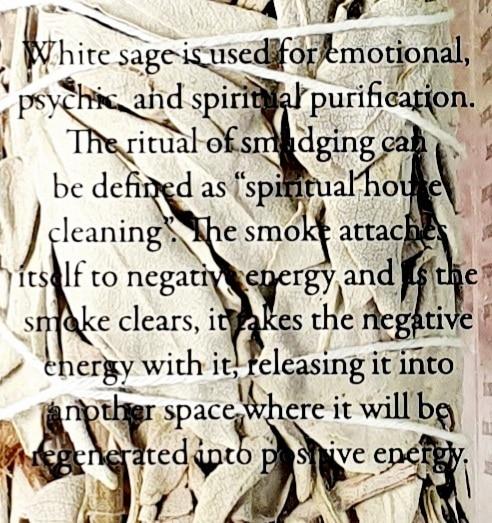 white sage description