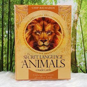 The Secret Language of Animals:Chip Richards