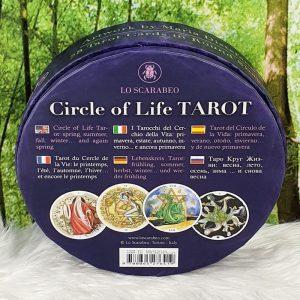 Circle of Life Tarot by Maria Distefano